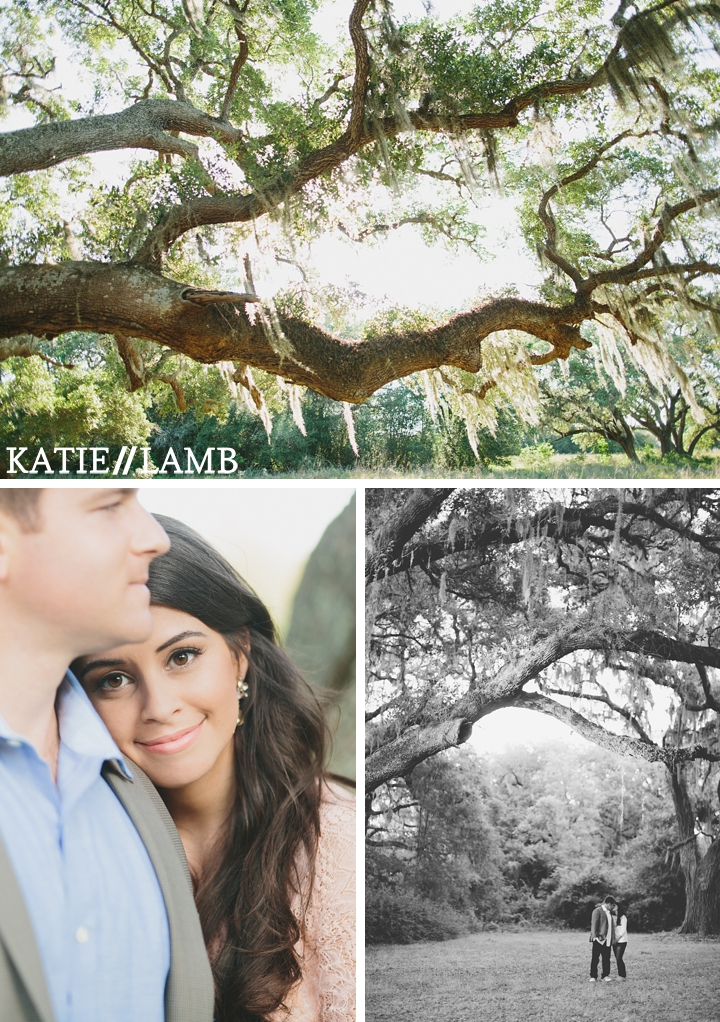 Spanish Oak Moss Engagement session